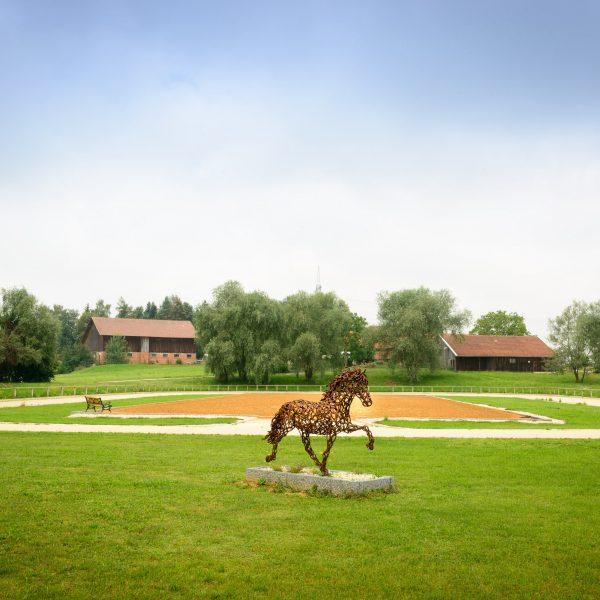 Reitanlage Pferde Oedhof Bayern