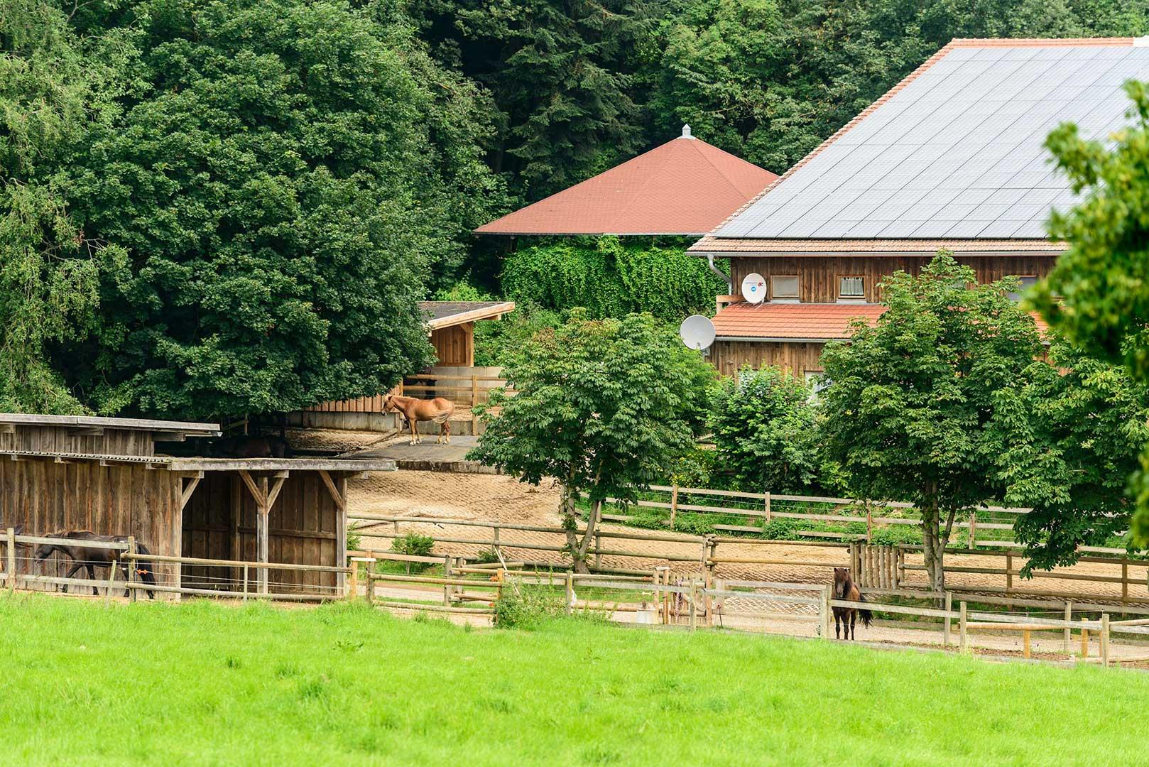 Pferdehof in Bayern Oedhof
